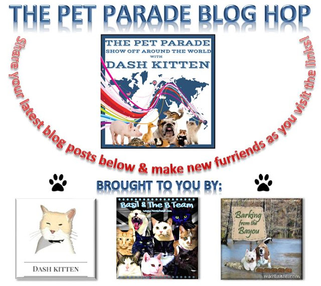 The NEW Pet Parade Banner 2019